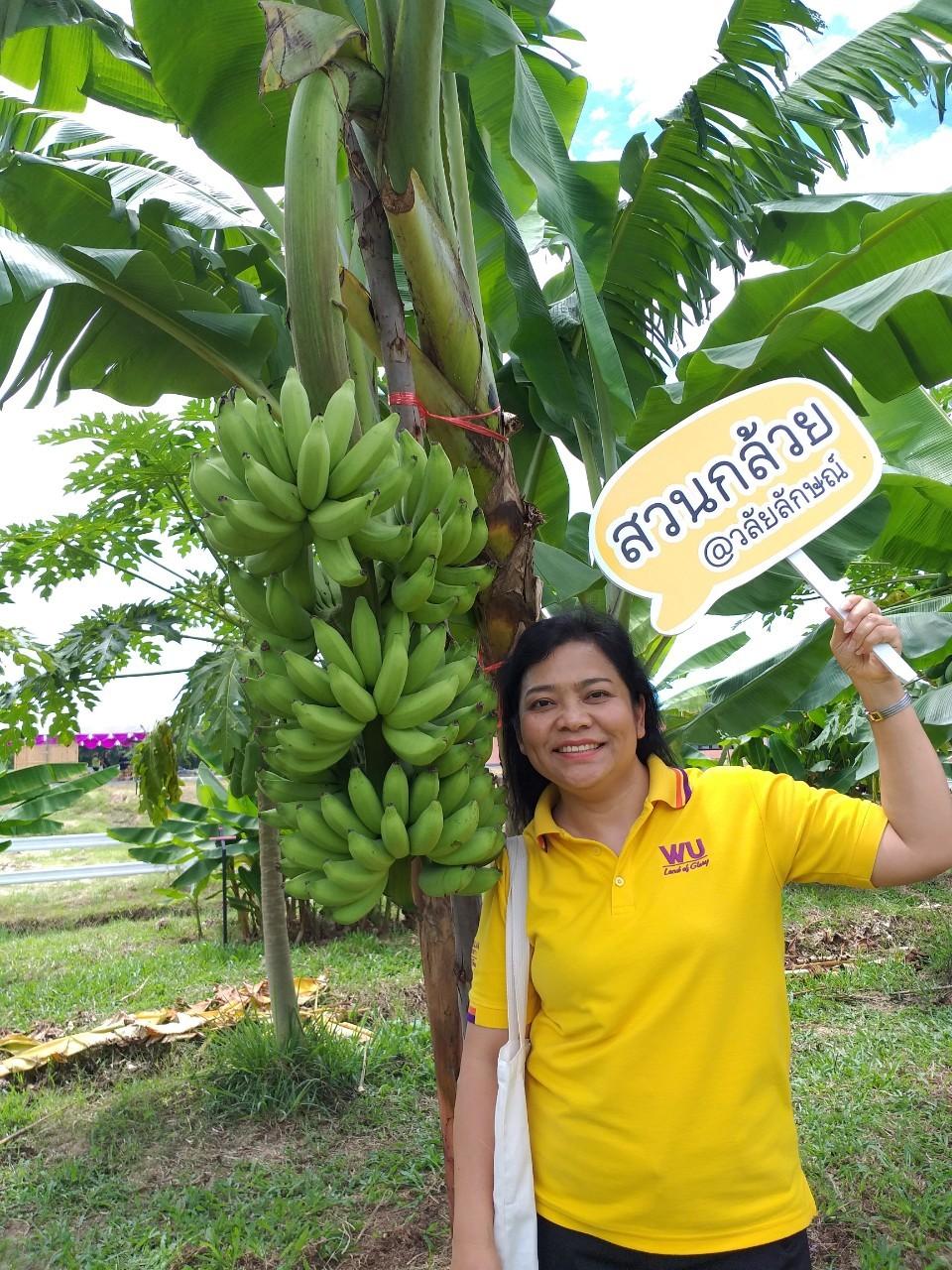 สวนกล้วย-วลัยลักษณ์_๒๐๑๐๒๙_12