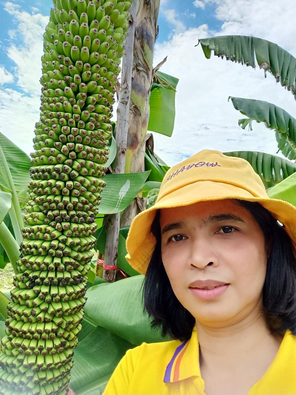 สวนกล้วย-วลัยลักษณ์_๒๐๑๐๒๙_38