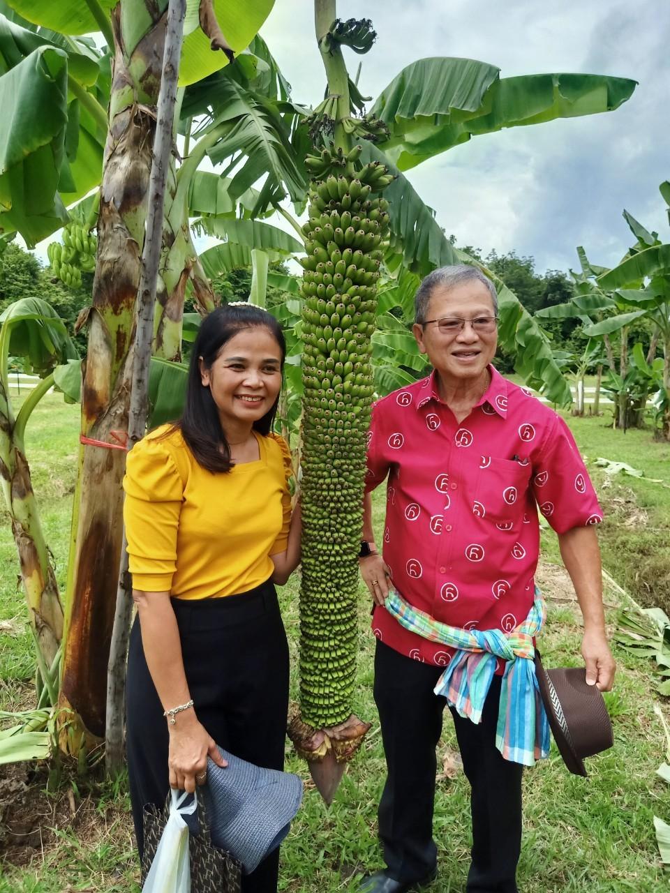 สวนกล้วย-วลัยลักษณ์_๒๐๑๐๒๙_44