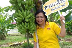 สวนกล้วย-วลัยลักษณ์_๒๐๑๐๒๙_11