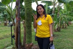 สวนกล้วย-วลัยลักษณ์_๒๐๑๐๒๙_4